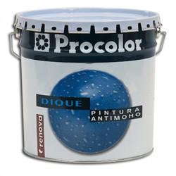 Dique Pintura Antimoho - Pintura plástica con conservante antimoho.