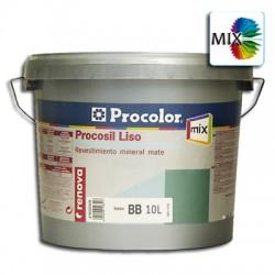 Procosil Liso Mate Mix - Revestimiento de silicato.