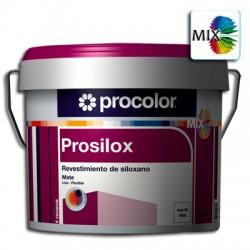 Prosilox Liso Mate Mix - Revestimiento de siloxano.